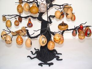egg-gourd-tree